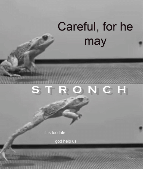 late: Careful, for he  may  STRONCH  it is too late  god help us