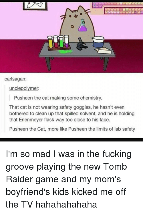 Pusheens: Carl Sagan:  unclepolymer:  Pusheen the cat making some chemistry.  That cat is not wearing safety goggles, he hasn't even  bothered to clean up that spilled solvent, and he is holding  that Erlenmeyer flask way too close to his face.  Pusheen the Cat, more like Pusheen the limits of lab safety I'm so mad I was in the fucking groove playing the new Tomb Raider game and my mom's boyfriend's kids kicked me off the TV hahahahahaha