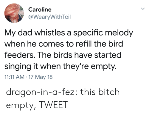 Bird Feeders: Caroline  @WearyWithToil  My dad whistles a specific melody  when he comes to refill the bird  feeders. The birds have starteg  singing it when they're empty.  11:11 AM.17 May 18 dragon-in-a-fez:  this bitch empty, TWEET