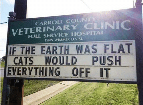 Cats, Dank, and Earth: CARROLL COUNTY  VETERINARY CLINIC  FULL SERVICE HOSPITAL  LYNN WIMMER D.V.M  IF THE EARTH WAS FLAT  CATS WOULD  EVERYTHING OFF IT  PUSH