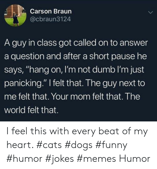 """Cats, Dogs, and Dumb: Carson Braun  @cbraun3124  A guy in class got called on to answer  a question and after a short pause he  says, """"hang on, I'm not dumb I'm just  panicking."""" felt that. The guy next to  me felt that. Your mom felt that. The  world felt that. I feel this with every beat of my heart. #cats #dogs #funny #humor #jokes #memes Humor"""