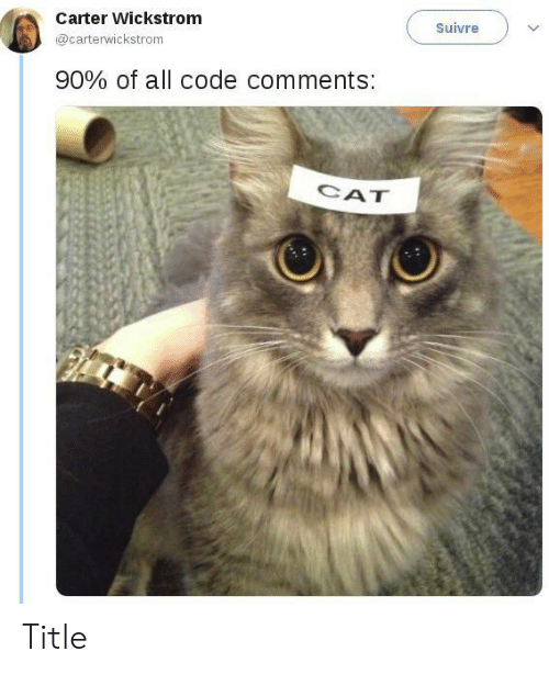 Carter: Carter Wickstrom  Suivre  @carterwickstrom  90% of all code comments:  CAT Title