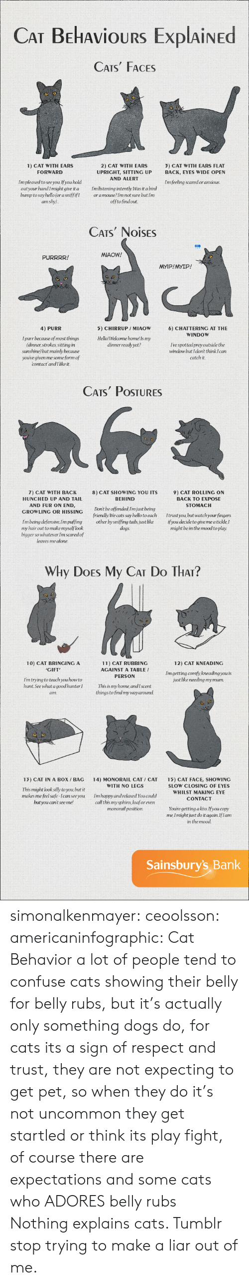 whilst: CAT BEHAvioURS ExplAiNED  CATS FACES  2) CAT WITH EARS  UPRIGHT, SITTING UP  AND ALERT  1) CAT WITH EARS  3) CAT WITH EARS FLAT  BACK, EYES WIDE OPEN  FORWARD  Im pleased to see you.If you hold  outyour handImight give it a mlistening intently. Was it a bird  bump to say hello (or a sniffifIoramouse?Im not sure but Im  Im feeling scared or anxious  am shy)  offtofindout  CATS NOISES  MIAOW!  PURRRR!  MYIP!MYIP!  4) PURR  5) CHIRRUP /MIAOW  HellolWelcome home! Is my  dinnerready yet?  6) CHATTERING AT THE  WINDOW  I purr because of most things  (dinner strokes, sitting in  sunshine but mainly because  youúve given me some form of  I've spottedpreyoutside the  window but I dont think Ican  catch it  contact andI like it.   CATs PoSTURES  7) CAT WITH BACK  HUNCHED UP AND TAIL  AND FUR ON END,  8) CAT SHOWING YOU ITS  BEHIND  9) CAT ROLLING ON  BACK TO EXPOSE  STOMACH  GROWLING OR HISSINC Dont be offended Im just being  friendly We cats say hello toeach Itrust you but watchyour fingers  Im being defensive.lim puffing other by sniffing tails, just like ifyou decide to give me a tickle,I  dogs.  my hair out to make myselflook  bigger so whatever Im scaredof  leaves me alone.  might be in the mood to play.   Why DoEs My CAT Do THAr?  10) CAT BRINGING A  CIFT  12) CAT KNEADING  11) CAT RUBBING  AGAINST A TABLE /  PERSON  Imgetting comfy, kneading you is  just like needing mymum.  Im trying to teach you howto  hunt.See what a goodhunter  am.  This is my home andIscent  things to find mywayaround.  13) CAT IN A BoX / BAG 14) MONORAIL CAT CAT 15) CAT FACE, SHOWING  WITH NO LEGS  This might look silly to you, but it  makes me feel safe-Ican seeyou  but you cant seeme!  SLOW CLOSING OF EYES  WHILST MAKING EYE  CONTACT  Im happy and relaxed You could  call this mysphinx loaforeven  monorail position.  Youre getting akiss.Ifyou copy  me, Imightjust do it again.Iflam  in the mood  Sainsbury's Bank simonalkenmayer:  ceoolsson:  americaninfographic:  Cat Behavior   a lot of people tend to confuse cats showing their belly for belly rubs, but it's actually only something dogs do, for cats its a sign of respect and trust, they are not expecting to get pet, so when they do it's not uncommon they get startled or think its play fight, of course there are expectations and some cats who ADORES belly rubs  Nothing explains cats. Tumblr stop trying to make a liar out of me.