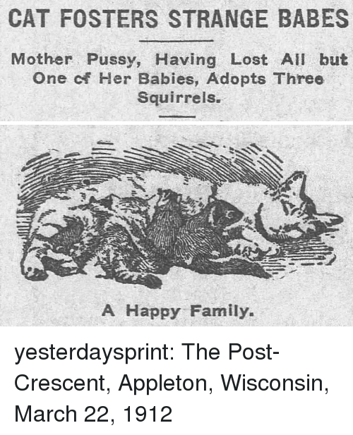 Family, Pussy, and Tumblr: CAT FOSTERS STRANGE BABES  Mother Pussy, Having Lost All but  One of Her Babies, Adopts Three  Squirrels.   A Happy Family yesterdaysprint:  The Post-Crescent, Appleton, Wisconsin, March 22, 1912