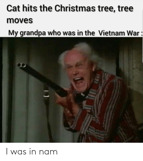 Who Was: Cat hits the Christmas tree, tree  moves  My grandpa who was in the Vietnam War: I was in nam