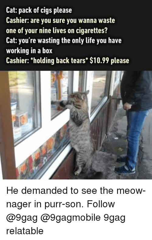 """Nagers: Cat: pack of cigs please  Cashier: are you sure you wanna waste  one of your nine lives on cigarettes?  Cat: you're wasting the only life you have  working in a box  Cashier: """"holding back tears $10.99 please He demanded to see the meow-nager in purr-son. Follow @9gag @9gagmobile 9gag relatable"""