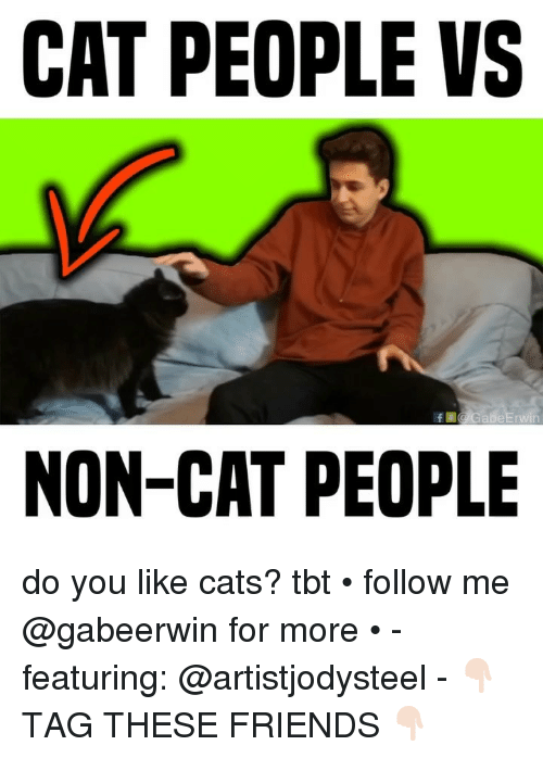 Cats, Friends, and Memes: CAT PEOPLE VS  NON-CAT PEOPLE do you like cats? tbt • follow me @gabeerwin for more • - featuring: @artistjodysteel - 👇🏻 TAG THESE FRIENDS 👇🏻