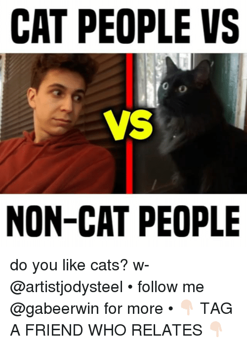 Cats, Memes, and 🤖: CAT PEOPLE VS  VS  NON-CAT PEOPLE  0 do you like cats? w- @artistjodysteel • follow me @gabeerwin for more • 👇🏻 TAG A FRIEND WHO RELATES 👇🏻
