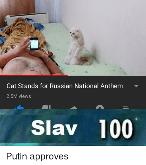Anaconda, National Anthem, and Putin: Cat Stands for Russian National Anthem  2.5M views  Slav 100 Putin approves