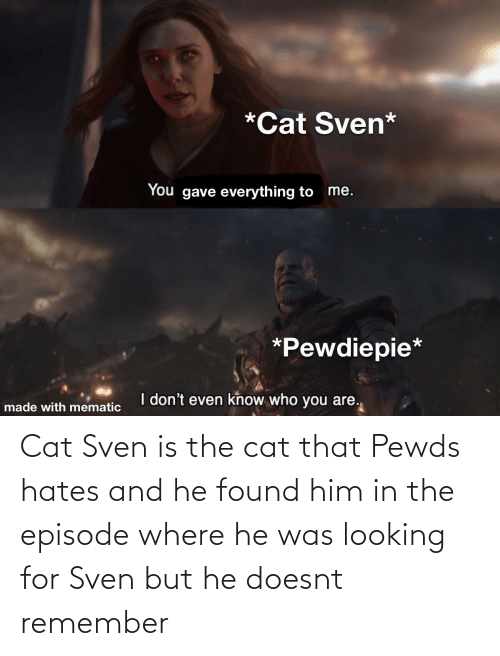 Found Him: Cat Sven is the cat that Pewds hates and he found him in the episode where he was looking for Sven but he doesnt remember