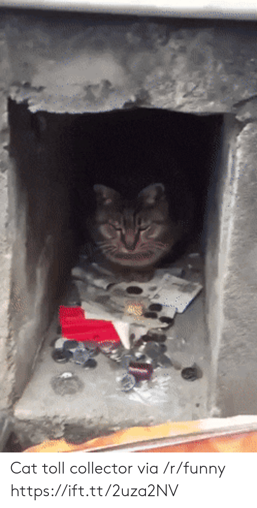 Funny, Cat, and Via: Cat toll collector via /r/funny https://ift.tt/2uza2NV