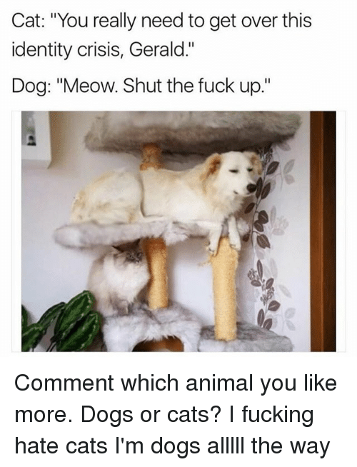 """Meowe: Cat: """"You really need to get over this  identity crisis, Gerald.""""  Dog: """"Meow. Shut the fuck up."""" Comment which animal you like more. Dogs or cats? I fucking hate cats I'm dogs alllll the way"""