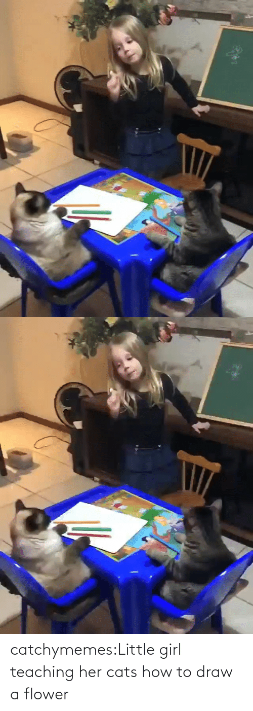 How To: catchymemes:Little girl teaching her cats how to draw a flower