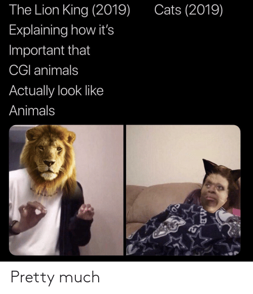 cgi: Cats (2019)  The Lion King (2019)  Explaining how it's  Important that  CGI animals  Actually look like  Animals Pretty much