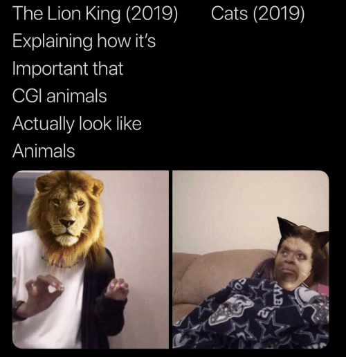 cgi: Cats (2019)  The Lion King (2019)  Explaining how it's  Important that  CGI animals  Actually look like  Animals