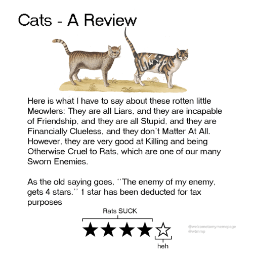 """Cats, Dank, and Clueless: Cats - A Revievw  Here is what I have to say about these rotten little  Meowlers: They are all Liars, and they are incapable  of Friendship, and they are all Stupid, and they are  Financially Clueless, and they don't Matter At All.  However, they are very good at Killing and being  Otherwise Cruel to Rats, which are one of our many  Sworn Enemies.  As the old saying goes, The enemy of my enemy.  gets 4 stars."""" 1 star has been deducted for tax  purposes  Rats SUCK  @welcometomymemepage  @wtmmp  heh"""