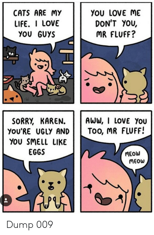 Aww, Cats, and Life: CATS ARE MY  YOU LOVE ME  DON'T YOU,  LIFE. I LOVE  YOU GUYS  MR FLUFF?  SORRY, KAREN  you'RE UGLY AND  AWW, I LOVE You  Too, MR FLUFF!  YOU SMELL LIKE  EGGS  MEOW  MEOW Dump 009