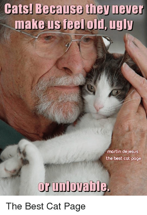 Martin, Memes, and Ugly: Cats! Because the never  make us feel old, ugly  martin dejesus  the best cat page  or unlovable. The Best Cat Page