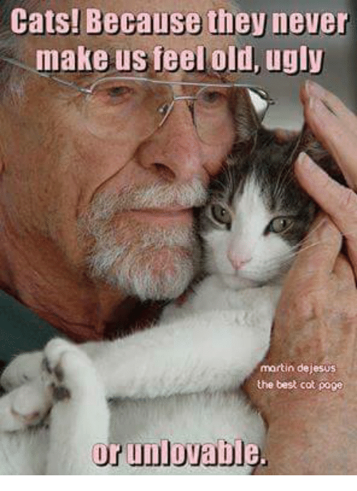 Poge: Cats! cause  they never  make us feel old, ugly  martin dejesus  the best cot poge  r unl