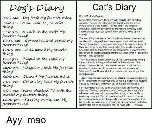 """Assassination, Ayy LMAO, and Snitch: Cat's Diary  Dog's Diary  Day 983 of My Captivity  8:00 am Dog food My favorite thing  My captors continue to taunt me with bizarre little dangling  7:30 am A car ride! My favorite  objects. They dine lavishly on fresh meat, while the other  inmates and I are fed hash or some sort of dry nuggets  Although I make my contempt for the rations perfectly clear  7:40 am A walk in the park My  l nevertheless must eat something in order to keep up my  strength.  favorite thing!  The only thing that keeps me going is my dream of escape. In  10:30 am Got rubbed and petted My  an to them, I once again vomit on the carpet  Today decapitated a mouse and dropped its headless body at  favorite thing!  their feet. Ihad hoped this would strike fear into their hearts  12:00 pm Milk bones My favorite  since this clearly demonstrates my capabilities. However, they  merely made condescending comments about what a """"good little  hunter"""" I am, Bastards!  1:00 pm Played in the yard My  There was some sort of assembly of their accomplices tonight.  favorite thing!  I was placed in solitary confinement for the duration of the  event. However, could hear the noises and smell the food. I  3:00 pm Wagged my tail My favorite  overheard that my confinement was due to the power of  allergies."""" must learn what this means, and how to use it to  s oo pm my advantage  successful in an attempt to assassinate one  Dinner! My favorite thing.  Today was almost of my tormentors by weaving around his feet as he was walking  7:00 pm Got to play ball My favorite  must try this again tomorrow, but at the top of the stairs  am convinced that the other prisoners here are flunkies and  8:00 pm Wow! Watched TV with the  snitches. The dog receives special privileges. He is regularly  released, and seems to be more than willing to return. He is  people' My favorite thing!  obviously retarded. The bird must be an informant. I observe  11:00 pm Sleeping on the bed My  him communicat"""