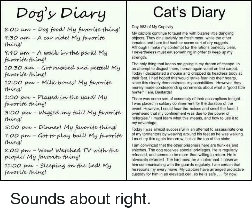 """Flunky: Cat's Diary  Dog's Diary  Day 983 of My Captivity  8:00 am Dog food! My favorite thing  My captors continue to taunt me with bizarre little dangling  a:30 am A car ride! My favorite  objects. They dine lavishly on fresh meat, while the other  inmates and I are fed hash or some sort of dry nuggets  Although make my contempt for the rations perfectly clear  9:40 am A walk in the parkl My  nevertheless must eat something in order to keep up my  strength.  favorite thing!  The only thing that keeps me going is my dream of escape. In  10:30 am Got rubbed and petted My  an attempt to disgust them, l once again vomit on the carpet  favorite thing!  Today decapitated a mouse and dropped its headless body at  their feet. Ihad hoped this would strike fear into their hearts  12:00 pm Milk bones My favorite  since this clearly demonstrates my capabilities. However, they  merely made condescending comments about what a """"good little  hunter"""" I am, Bastards!  1:00 pm Played in the yard My  There was some sort of assembly of their accomplices tonight.  favorite thing!  I was placed in solitary confinement for the duration of the  event. However, I could hear the noises and smell the food. I  3:00 pm Wagged my taiu My favorite overheard that my confinement was due to the power of  thing!  allergies."""" must learn what this means, and how to use it to  my advantage  5:00 pm Dinner! My favorite thing  Today was almost successful in an attempt to assassinate one  of my tormentors by weaving around his feet as he was walking  7:00 pm Got to play ball My favorite  I must try this again tomorrow, but at the top of the stairs  am convinced that the other prisoners here are flunkies and  8:00 pm Wow! Watched TV with the snitches. The dog receives special privileges. He is regularly  released, and seems to be more than willing to return. He is  people' My favorite thing!  obviously retarded. The bird must be an informant. I observe  11:00 pm Sleeping  on the bed! My  him communicating """