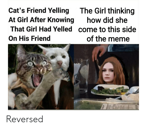 Image result for woman yelling at cat reversed