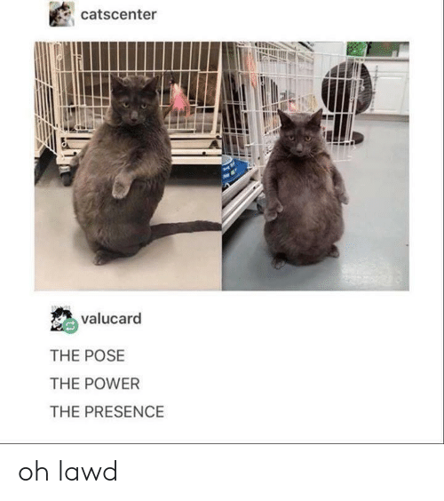 Power, Presence, and Lawd: catscenter  valucard  THE POSE  THE POWER  THE PRESENCE oh lawd
