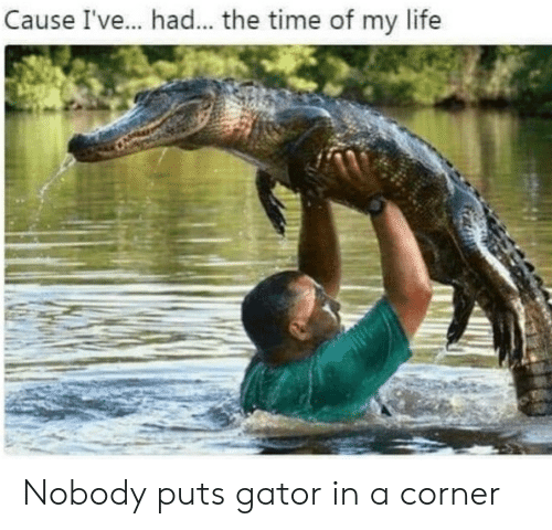 Life, Time, and The Time: Cause I've.. had... the time of my life Nobody puts gator in a corner