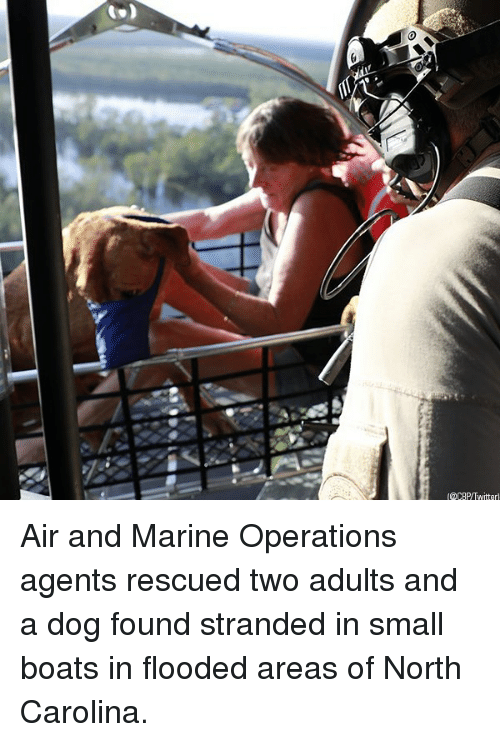 Memes, North Carolina, and 🤖: CBP/Twitterl Air and Marine Operations agents rescued two adults and a dog found stranded in small boats in flooded areas of North Carolina.