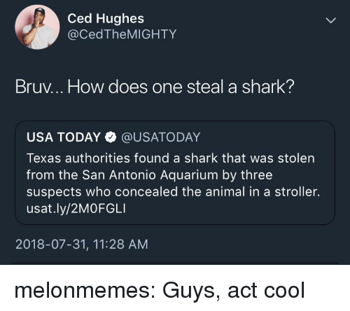 Bruv: Ced Hughes  @CedTheMIGHTY  Bruv... How does one steal a shark?  USA TODAY @USATODAY  Texas authorities found a shark that was stolen  from the San Antonio Aquarium by three  suspects who concealed the animal in a stroller.  usat.ly/2MOFGLI  2018-07-31, 11:28 AM melonmemes:  Guys, act cool