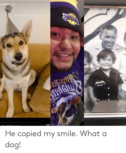 He Smiles: ceebeezy 2m  he smiles just like joel  АЯ р  AR He copied my smile. What a dog!