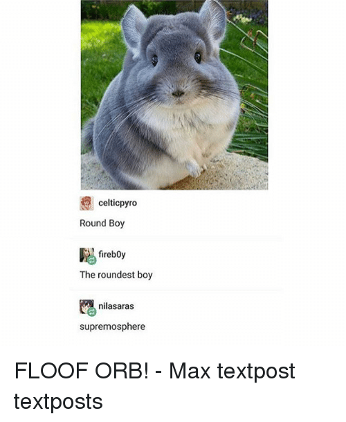 Celtic, Memes, and Pyro: celtic pyro  Round Boy  fireboy  The roundest boy  nilasaras  supremosphere FLOOF ORB! - Max textpost textposts
