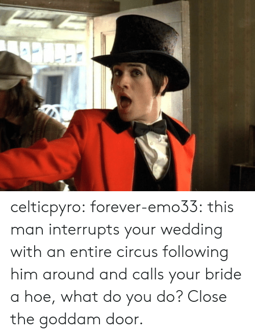 Hoe, Target, and Tumblr: celticpyro:  forever-emo33: this man interrupts your wedding with an entire circus following him around and calls your bride a hoe, what do you do? Close the goddam door.