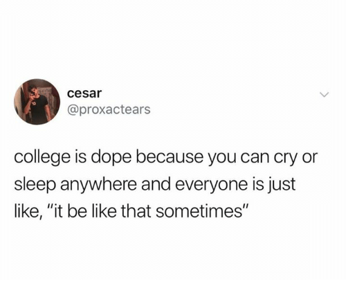 """Be Like, College, and Dank: cesar  @proxactears  college is dope because you can cry or  sleep anywhere and everyone is just  like, """"it be like that sometimes"""""""