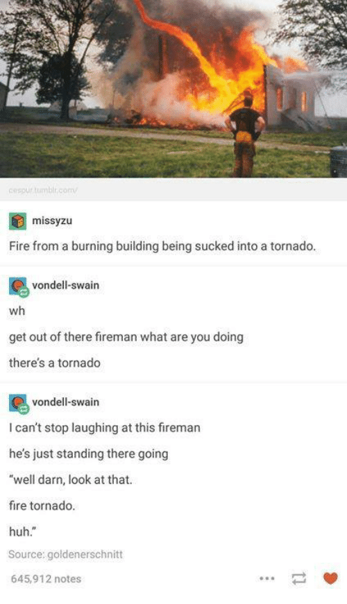 """tornadoes: cespurtumbl.comv  missyzu  Fire from a burning building being sucked into a tornado  vondell-swain  wh  get out of there fireman what are you doing  theres a tornado  vondell-swain  I can't stop laughing at this firemar  he's just standing there going  """"well darn, look at that.  fire tornado.  huh.""""  Source: goldenerschnitt  645,912 notes  一 箩"""