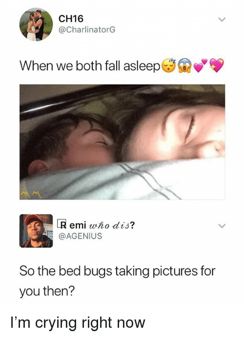 Crying, Fall, and Memes: CH16  @CharlinatorG  When we both fall asleep  R emi who dis?  @AGENIUS  So the bed bugs taking pictures for  you then? I'm crying right now