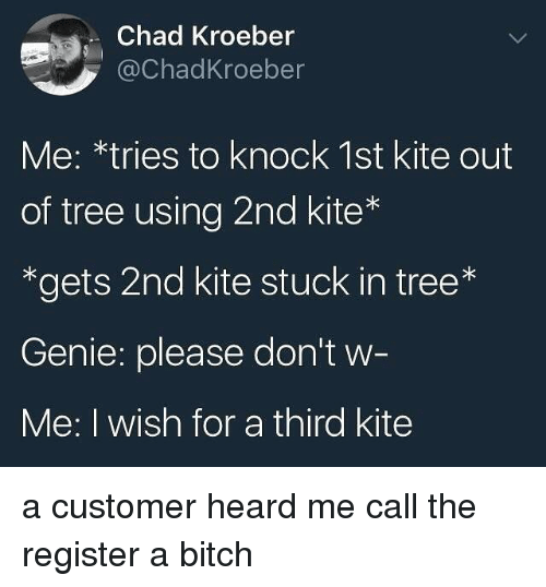Bitch, Tree, and Trendy: Chad Kroeber  @ChadKroeber  Me: *tries to knock 1st kite out  of tree using 2nd kite*  *gets 2nd kite stuck in tree*  Genie: please don't w  Me: I wish for a third kite a customer heard me call the register a bitch