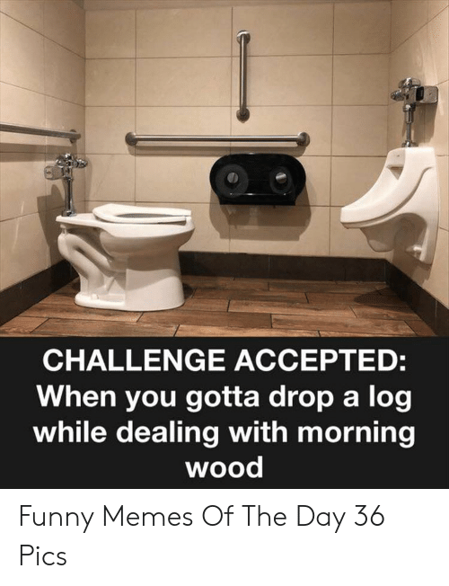 When You Gotta: CHALLENGE ACCEPTED:  When you gotta drop a log  while dealing with morning  wood Funny Memes Of The Day 36 Pics