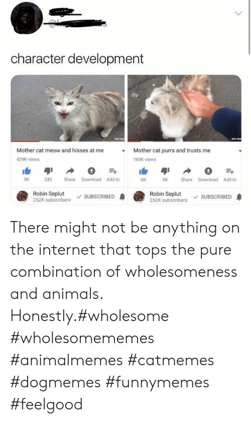 Animals, Internet, and Wholesome: character development  Mother cat meow and hisses at me  Mother cat purrs and trusts me  439K views  168K views  Share Download Add to  9K  245  6K  58  Share Download Add to  Robin Seplut  252K subscribers  Robin Seplut  252K subscribers  SUBSCRIBED  SUBSCRIBED There might not be anything on the internet that tops the pure combination of wholesomeness and animals. Honestly.#wholesome #wholesomememes #animalmemes #catmemes #dogmemes #funnymemes #feelgood
