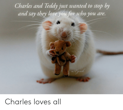 Love, Wanted, and Who: Charles and Teddy just wanted to stop by  and say they love you for who you are. Charles loves all