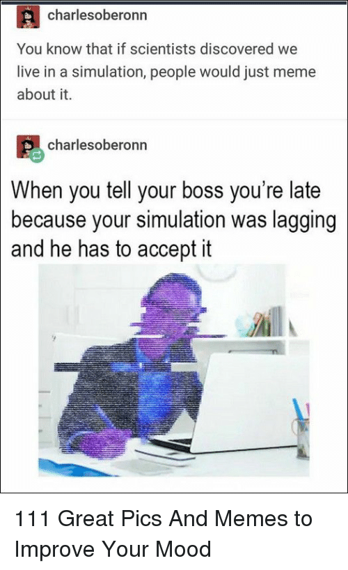 simulation: charlesoberonn  You know that if scientists discovered we  live in a simulation, people would just meme  about it.  charlesoberonn  When you tell your boss you're late  because your simulation was lagging  and he has to accept it 111 Great Pics And Memes to Improve Your Mood