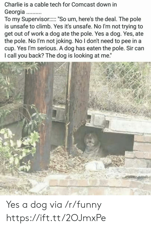 """Charlie, Funny, and Work: Charlie is a cable tech for Comcast down in  Georgia  To my Supervisor:. """"So um, here's the deal. The pole  is unsafe to climb. Yes it's unsafe. No l'm not trying to  get out of work a dog ate the pole. Yes a dog. Yes, ate  the pole. No I'm not joking. No I don't need to pee in a  cup. Yes I'm serious. A dog has eaten the pole. Sir can  I call you back? The dog is looking at me."""" Yes a dog via /r/funny https://ift.tt/2OJmxPe"""