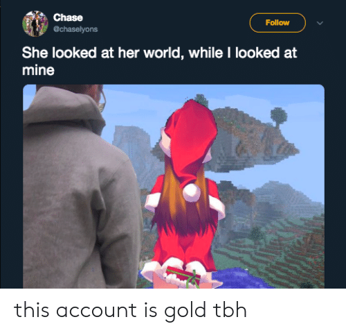 Tbh, Chase, and World: Chase  Follow  chaselyons  She looked at her world, while I looked at  mine this account is gold tbh