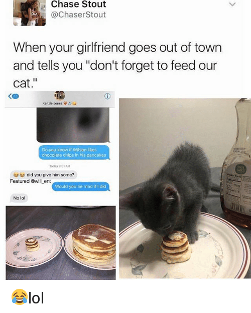 "Cats, Lol, and Memes: Chase Stout  @ChaserStout  When your girlfriend goes out of town  and tells you ""don't forget to feed our  cat.""  く四  Kenzie Jones Vo  Do you know if Wilson likes  chocolate chips in his pancakes  Today 901AM  did you give him some?  Featured @will ent owlbe madíit l dic  Would you be mad if I did  No lol 😂lol"