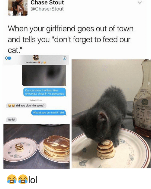 "Chasee: Chase Stout  @ChaserStout  When your girlfriend goes out of town  and tells you ""don't forget to feed our  cat.""  く四  Kenzie Jones ψ  Do you know if Wilson likes  chocolate chips in his pancakes  Today 9:01AM  did you give him some?  Would you be mad if I did  No lol  ,鄉 😂😂lol"