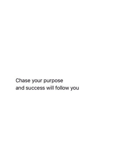Chase, Success, and Will: Chase your purpose  and success will follow you