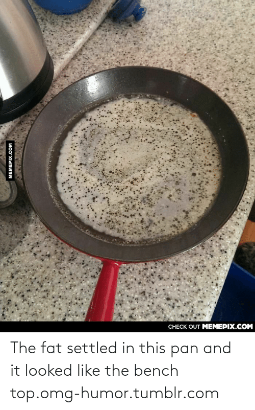128i: CHECK OUT MEMEPIX.COM  МЕМЕРIХ.сом The fat settled in this pan and it looked like the bench top.omg-humor.tumblr.com