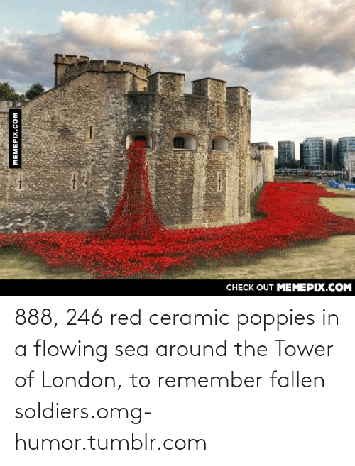 Poppies: CHECK OUT MEMEPIX.COM  MEMEPIX.COM 888, 246 red ceramic poppies in a flowing sea around the Tower of London, to remember fallen soldiers.omg-humor.tumblr.com