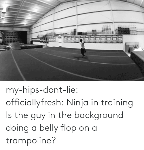 Hips Don't Lie: CHEER  FUnti my-hips-dont-lie:  officiallyfresh:  Ninja in training  Is the guy in the background doing a belly flop on a trampoline?