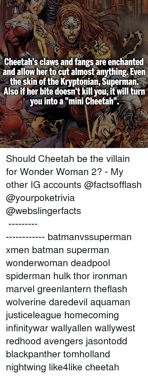"""Deadpoole: Cheetah's claws and fangs are enchanted  and allow her to cut almost anything. Even  the skin of the Kryptonian, Superman.  Also if her bite doesn't kill you, it will turn  you into a """"mini Cheetah"""" Should Cheetah be the villain for Wonder Woman 2? - My other IG accounts @factsofflash @yourpoketrivia @webslingerfacts ⠀⠀⠀⠀⠀⠀⠀⠀⠀⠀⠀⠀⠀⠀⠀⠀⠀⠀⠀⠀⠀⠀⠀⠀⠀⠀⠀⠀⠀⠀⠀⠀⠀⠀⠀⠀ ⠀⠀--------------------- batmanvssuperman xmen batman superman wonderwoman deadpool spiderman hulk thor ironman marvel greenlantern theflash wolverine daredevil aquaman justiceleague homecoming infinitywar wallyallen wallywest redhood avengers jasontodd blackpanther tomholland nightwing like4like cheetah"""